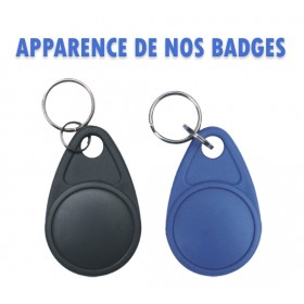 Apparence de nos badges immeuble NORALSY